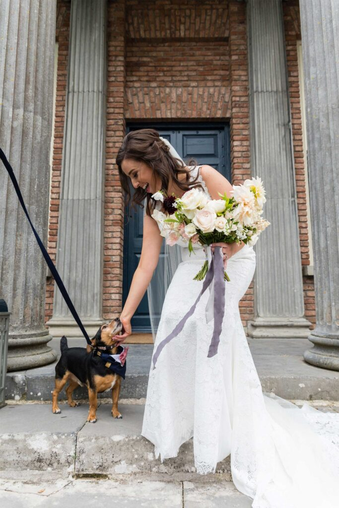 dog friendly wedding venue ireland